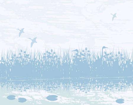 Vector illustration of birds in a natural wetland Illustration