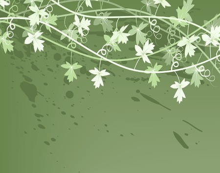 groviglio: Modificabili illustrazione vettoriale di un generico vite bush  Vettoriali