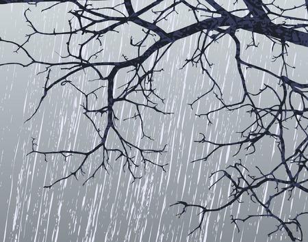 drench: Editable ilustraci�n vectorial de las ramas desnudas en invierno  Vectores