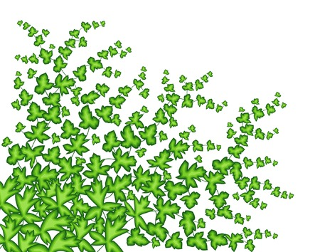 creeping: Editable ilustraci�n vectorial de una planta rastrera  Vectores