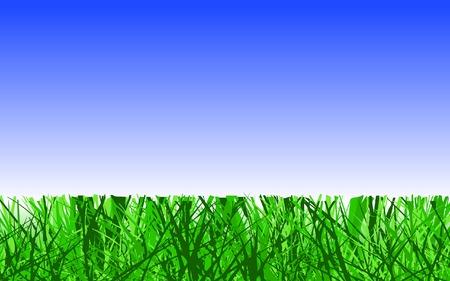 grass verge: Editable vector design of cut lawn grass Illustration
