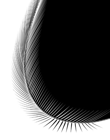 Abstract editable vector illustration of a feather Vector