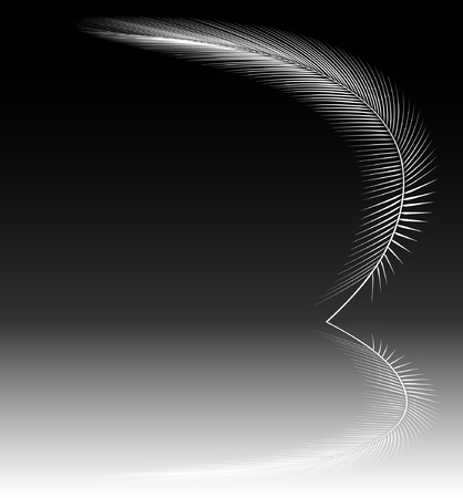 frond: Editable vector design of a white feather and reflection