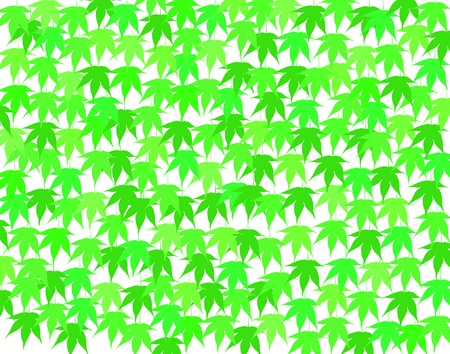 hedge trees: Background vector design of fresh green maple leaves