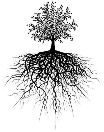 Editable vector illustration of a tree and its roots Stock Vector - 2339362