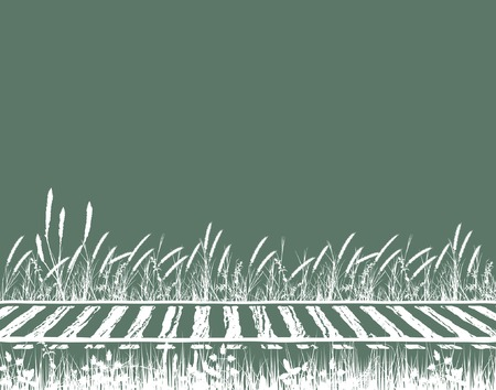 Editable vector illustration of grassy railway tracks Illustration