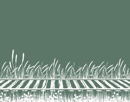 grass verge: Modificabile illustrazione vettoriale erboso di binari