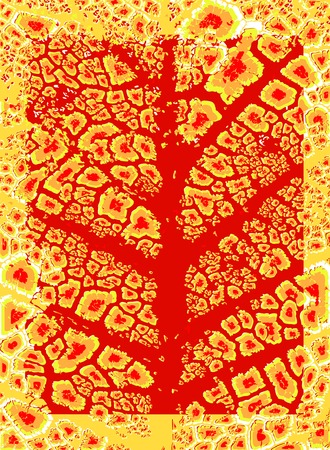 deteriorate: Abstract editable vector illustration of an autumn leaf