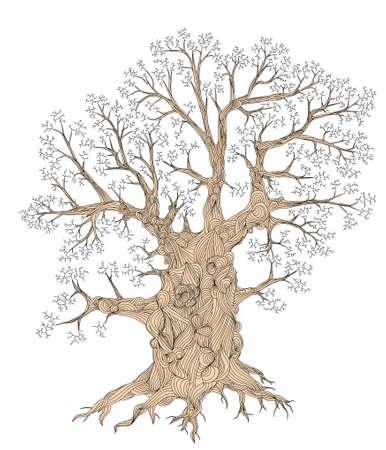 contorted: Detailed editable vector illustration of a leafless oak tree including basic outline