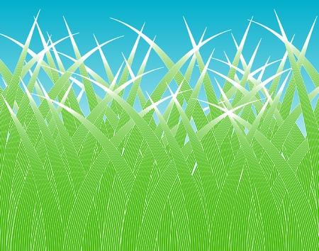 grass verge: Editable vector design of stylized grass blades Illustration