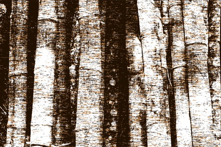 �corces: Modifiable illustration vectorielle de troncs d'arbres et grunge