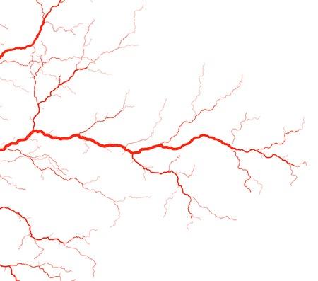 circolazione: Modificabile illustrazione vettoriale di rosso vasi sanguigni  Vettoriali