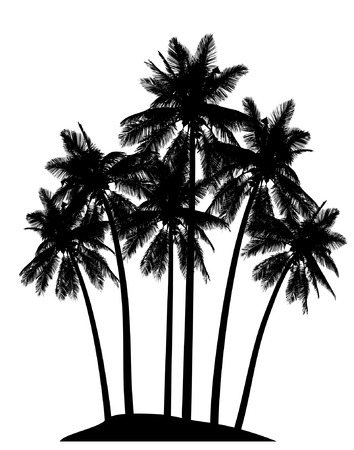 palm tree vector: Editable vector illustration of palm tree silhouettes