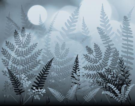 Illustration of mixed ferns under blue moonlight Stock Illustration - 3728766