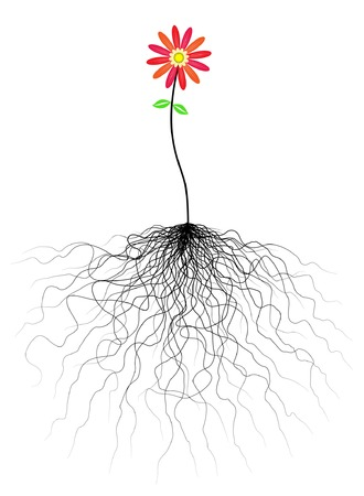 Editable vector flower illustration with tangled roots Stock Vector - 3728778