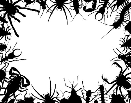 Border frame of editable vector outlines of insects and other invertebrates Vector