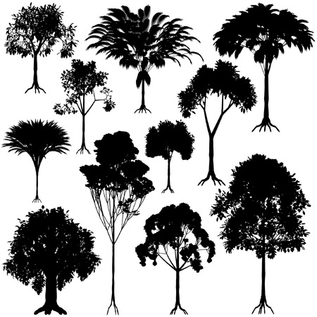 Set of editable vector generic tree silhouettes Stock Vector - 4015370