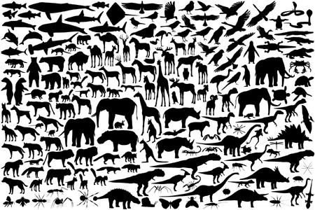 Diverse set of editable vector animal outlines Stock Vector - 4174188