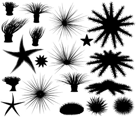 anemones: Set of editable vector silhouettes of sea lifeforms