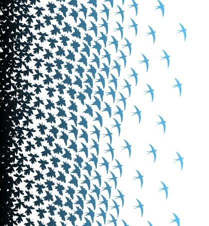 swallow: Editable vector illustratie van bladeren en vogels