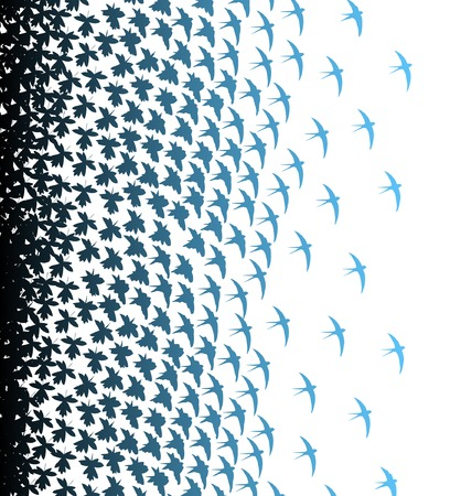 swallows: Editable vector illustration of leaves and birds