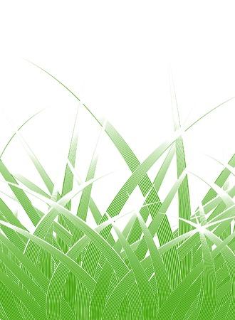 grass blades: Editable vector design of stylized grass blades Illustration