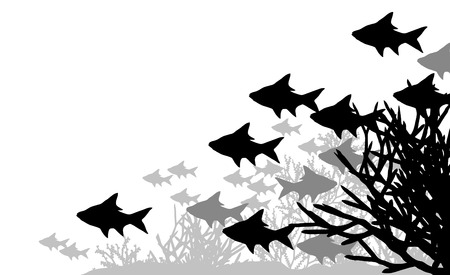 coral:  illustration of fish and coral silhouettes
