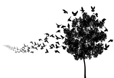swoop:  siluetas de una bandada de palomas volando a un �rbol anidan Vectores