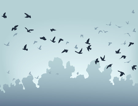 flock of birds: illustration of a flock of flying birds