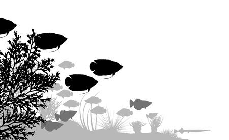 reefs: illustration of fish and coral silhouettes