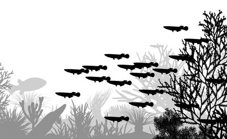 illustration of coral and fish silhouettes Vector