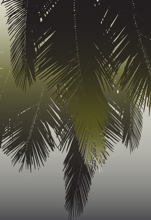 design of hanging coconut palm fronds Vector