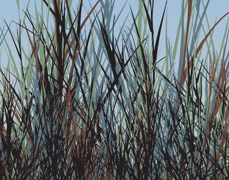 grass verge: Editable design of tall rough grass