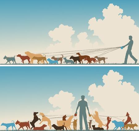 empacar: Siluetas de dos colores de primer plano de un hombre caminando muchos perros Vectores