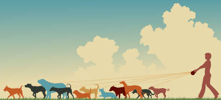 canines: Colorful editable silhouette of a woman walking many dogs with copy space
