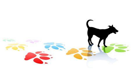 mutt: Editable illustration of a young dog silhouette and colorful paw prints with space for text Illustration