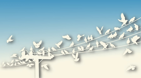 Editable vector cutout of birds roosting on telegraph wires with background made using a gradient mesh Vector