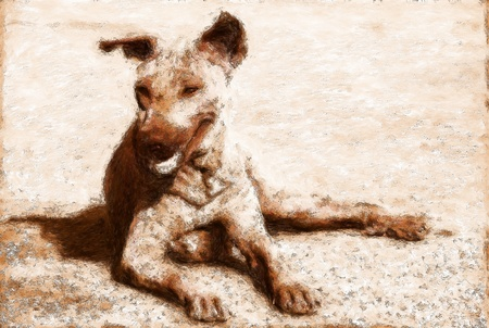 awaken: Painting in brown of a mongrel street dog from Thailand