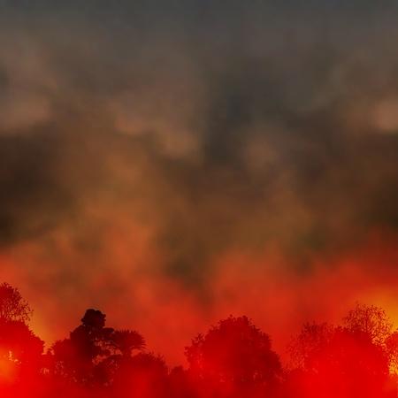 bosbrand: Bewerkbare vector EPS10 illustratie van een rokerige bosbrand gemaakt met behulp van een gradiënt maas Stock Illustratie
