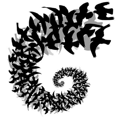 bandada pajaros: Editable ilustración vectorial de una espiral de siluetas de aves que vuelan