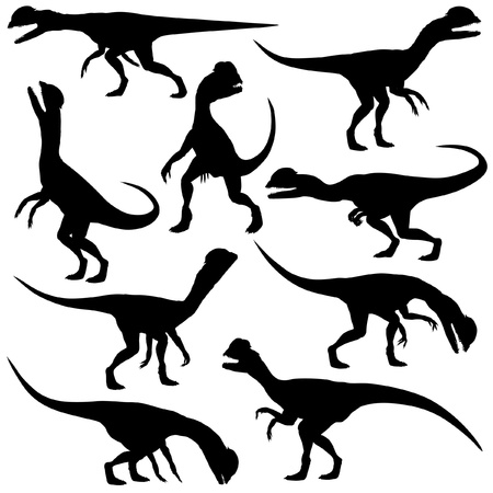 Set of editable silhouettes of Dilophosaurus dinosaurs in various poses Stock Vector - 18911384