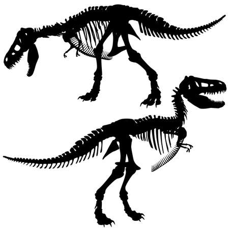 Editable silhouettes of the skeleton of a Tyrannosaurus rex dinosaur Vector
