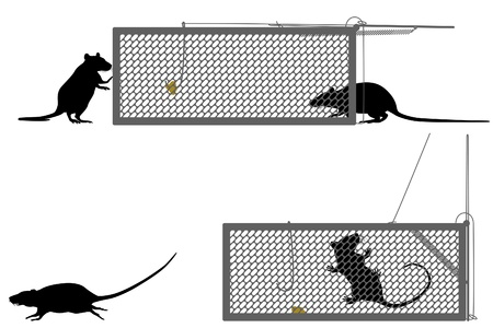 trap: Editable illustration of a rat getting caught in a humane trap Illustration