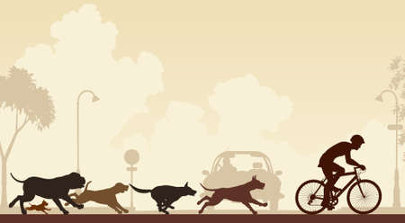 Editable illustration of dogs chasing a cyclist along a street Illustration
