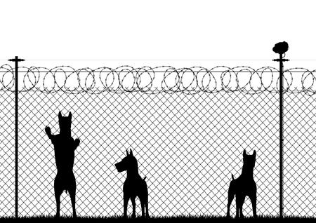Editable silhouette of guard dogs behind a chainlink security fence Vector
