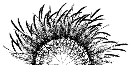 semicircular: Editable vector silhouette of a semi-circular ball of grass and roots