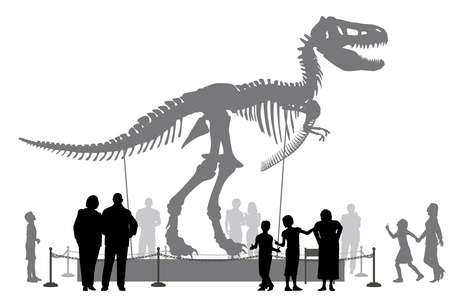extinction: Editable vector silhouettes of people looking at a Tyrannosaurus rex skeleton in a museum
