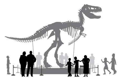 dinosauro: Vettoriale modificabile sagome di persone in cerca di un Tyrannosaurus rex scheletro in un museo Vettoriali