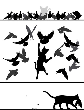 stalking: silhouette sequence of a cat stalking and catching a pigeon from a flock