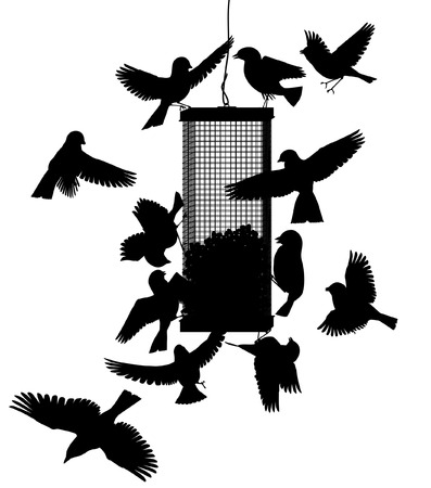bird feeder: Editable vector silhouettes of birds at a hanging feeder with all birds as separate objects